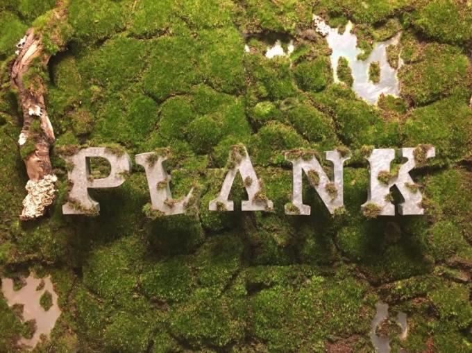 plank%e2%91%ac